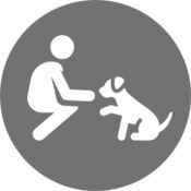 Training and Behavior