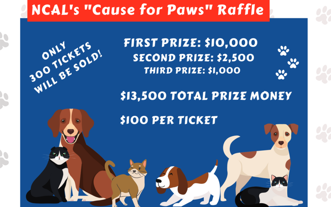 """""""Cause for Paws"""" Raffle is Back!"""